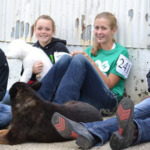 The 4-H dog show will be held Sunday, Aug. 18, at the Livestock Pavilion, Iowa State Fair. (Courtesy of ISU Extension and Outreach)