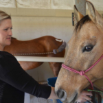 NCTA Professor Joanna Hergenreder teaches equine courses and is coach of the NCTA Ranch Horse Team. (Crawford/NTCA News)