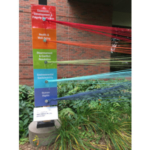 """Background Stories created this """"String Survey"""" for the 2017 Nobel Peace Prize Forum with strings color-coded by topic, designed to spark conversation and explore common ground. (Courtesy of FEAST! Local Foods Marketplace)"""