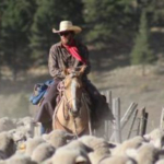 """2018 Photo Contest Winner -- """"Caught in the Middle"""" by Caleigh Payne of Alamosa, Colo. Photo taken in Rio Grande National Forest, Colo. (Courtesy of Colorado Department of Agriculture)"""