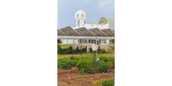 A traditional open-sky garden is situated next to an agrivoltaics system, in which plants are grown under solar photovoltaic panels. The study was conducted at the Biosphere 2, which can be seen in the background. (Courtesy of Patrick Murphy, University of Arizona)