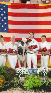 Maryland teen wins intermediate showmanship division