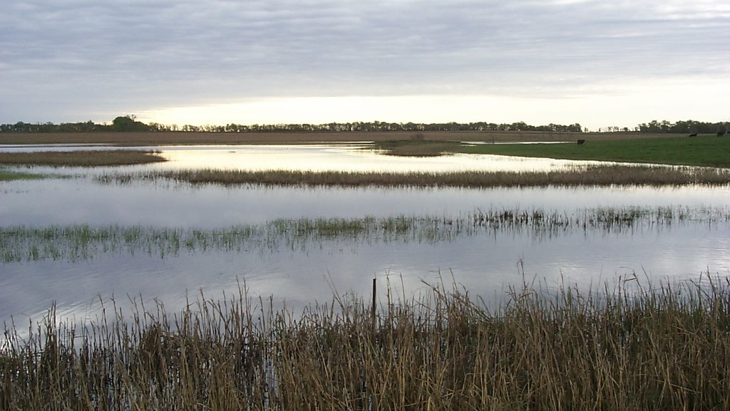 USDA awards $48M to improve critical wetlands