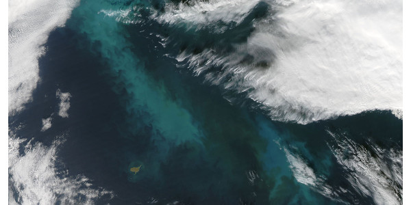 A 2009 phytoplankton bloom in the Bering Sea. Cloud seed bacteria may feed on phytoplankton. (Credit: NASA, Jeff Schmaltz, MODIS Rapid Response Team, Goddard Space Flight Center)