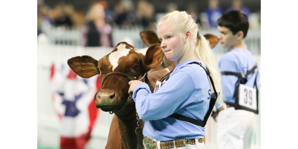 The North American International Livestock Exposition (NAILE), the largest all-breed, purebred livestock expo in the world, returns to the Kentucky Exposition Center Tuesday, Nov. 5 through Thursday, Nov. 21, 2019. (Courtesy of NAILE)