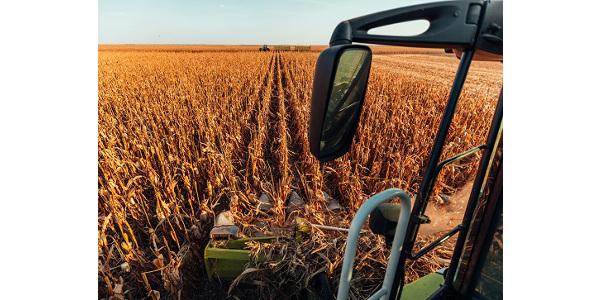 Bringing in the golden harvest by bernardbodo/stock.adobe.com.