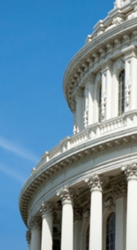 CA members comment on planned veto of SB1