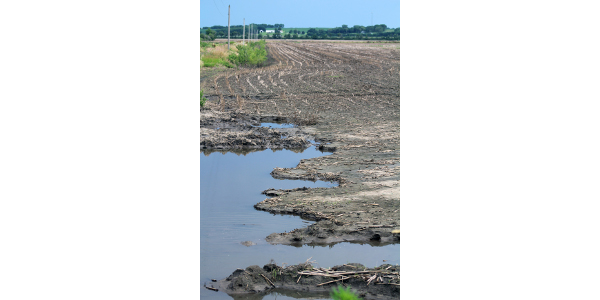 University of Missouri Extension specialists say sand and scours are among the many challenges of repairing flood-damaged fields. (Photo by Linda Geist)
