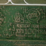 The 2019 Devine's Corn Maze & Pumpkin Patch is celebrating 100 Years of Kentucky Farm Bureau with their 10 acre corn maze in Harrodsburg, Kentucky. (Courtesy of Devine's Corn Maze & Pumpkin Patch)