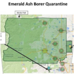 The Colo. Dept. of Agriculture (CDA) is proposing to repeal the emerald ash borer quarantine.
