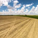 unplanted field