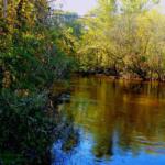 paw paw river