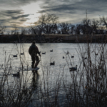 Colorado hunters should be able to find good waterfowl hunting opportunities during the 2019-2020 seasons. (Courtesy of CPW)