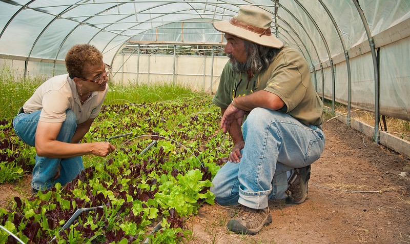 Grant to support national organic survey