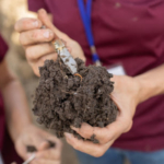 Soil tests can help you understand whether you have the microbial activity to supply nutrients to plants or whether your soil structure is sufficient to allow air and water to flow. (Courtesy of University of Minnesota Extension)