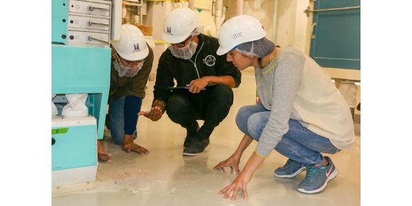 Participants of the IAOM-KSU Advanced Milling course examine purifier stocks while working on a purifier optimization exercise. (Courtesy of KSU)