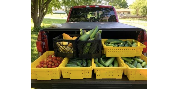 For the fourth consecutive year, the Iowa State University Extension and Outreach Master Gardener program partnered with food pantries across Iowa in an effort to reduce food insecurity in the state. (Courtesy of ISU Extension and Outreach)
