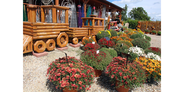Since 2005, the Burkholder family of Edina expanded its Dutch Garden Nursery operations to include eight greenhouses and a full line of supplies for gardening and landscaping. The Burkholders also give tours to area MU Extension Master Gardeners. (Photo by Linda Geist)