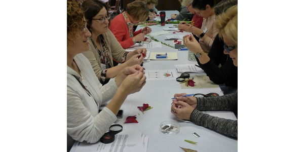 Master Gardener trainees learn botany using gladiolus and snapdragon flowers. (Courtesy of ISU Extension and Outreach)