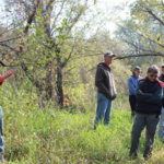 Iowans will have another fall opportunity to tour a forest and ask questions during the Fontana Park Forestry Field Day Nov. 8. (Courtesy of ISU Extension and Outreach)