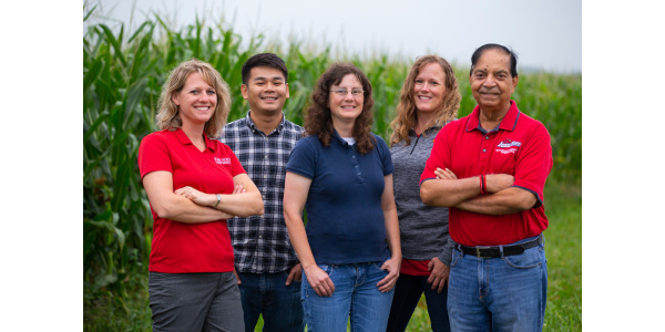 researchers standing in a corn field