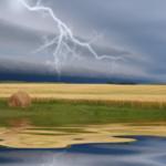 Winning photo by Donna Opoien of Pekin, ND. (Courtesy of North Dakota Farm Bureau)