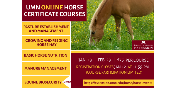 The University of Minnesota Extension Horse Team is once again offering online certificate courses for horse owners and professionals. All courses are online, semi self-paced, six-weeks in duration, and start January 13. (Courtesy of UMN)