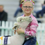 About 30,000 animals and their owners from around the globe will move into the Kentucky Exposition Center as they compete in the North American International Livestock Exposition (NAILE) for nearly $750,000 in premiums and awards. (Courtesy of Kentucky Venues)