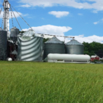 An On-Farm Grain Storage Management Workshop will be held at Kinderhook Creek Farm, 5168 So. Stephentown Rd., Stephentown, NY on Wednesday, November 20, 2019 from 11:00 am to 3:00 pm. (Courtesy of Cornell Cooperative Extension)