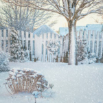 Horticulture specialists with Iowa State University share information about how snow can either benefit or damage landscape plants. (Photo credit: onepony/stock.adobe.com)