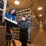 ARS seed analyst Amy Gurza and ARS seed curator Stephanie Greene examine safety backup seed samples preserved in a cold vault (0° F). (Courtesy of Photo by Peggy Greb, USDA, Agricultural Research Service)