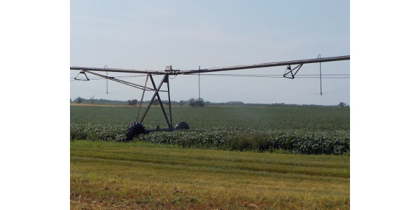 Irrigation is providing much-needed water to this soybean crop. (NDSU photo)