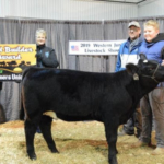 SDFU Membership Coordinator Rocky Forman and Executive Director Karla Hofhenke present a foundation Simmental heifer to 12-year-old 4-H member Cole Cavenee during the 2019 Western Jr. Livestock Show. (Courtesy of SDFU)