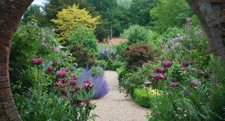 Gardening trends for 2020? Unconventional, sustainable ...