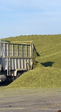 Silage Truck Workshop