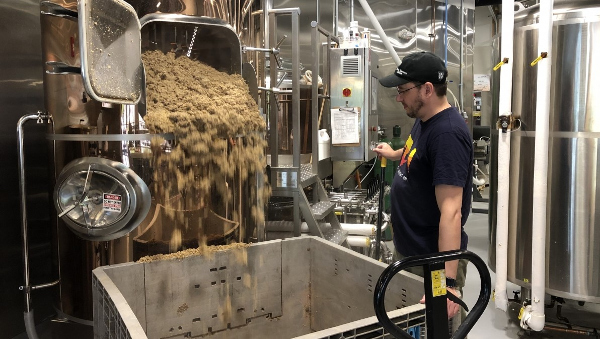 Brewery residues show promise as dairy cow feed