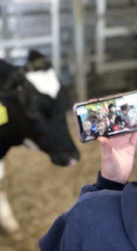 'Discover Dairy' shares virtual learning resources with teachers, students
