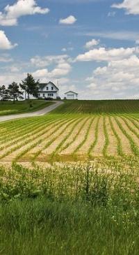 CDFA announces vacancies on fertilizer board