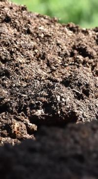 Proposals sought for new manure management practices