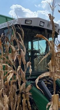 Corn farmers can apply a fungicide just once for foliar diseases