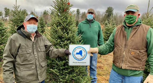 Annual Tree Cutting Promotes Ny S Christmas Tree Farms Morning Ag Clips