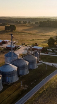 Corn and soybean production up in 2020