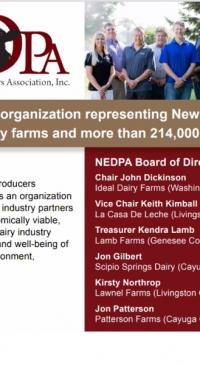 Northeast Dairy Producers Association announces legislative priorities
