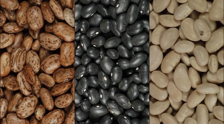dry beans