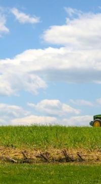 USDA Weekly Crop Progress reporting begins
