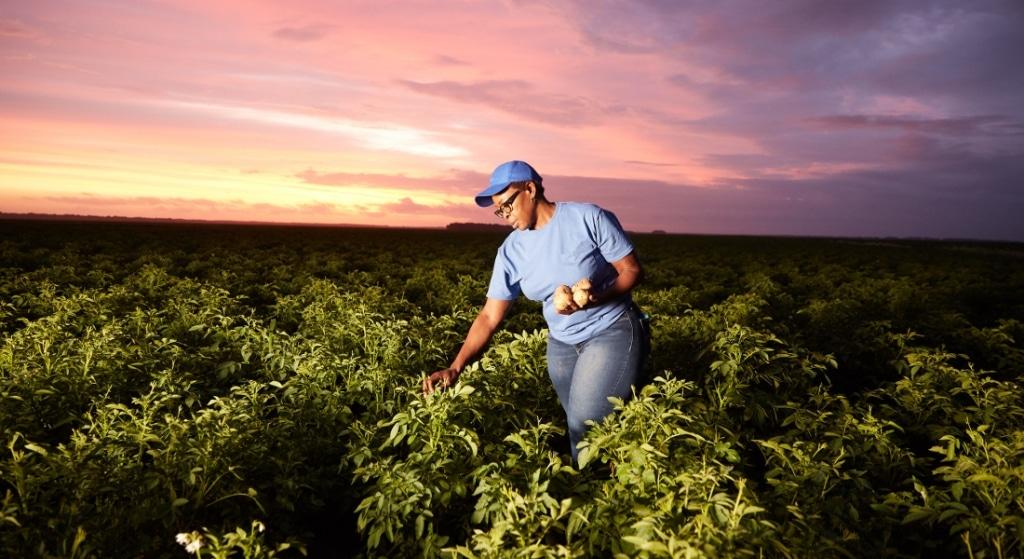 PepsiCo announces 2030 goal to scale regenerative farming practices
