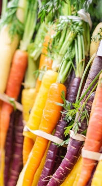 USDA terminates standards that impede marketing of specialty crops