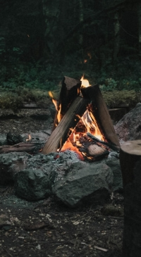Campers urged to use local firewood