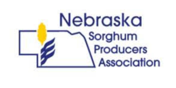 NeSPA passes two significant resolutions