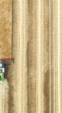 Illinois Agri-Food Alliance seeks input on workforce issues